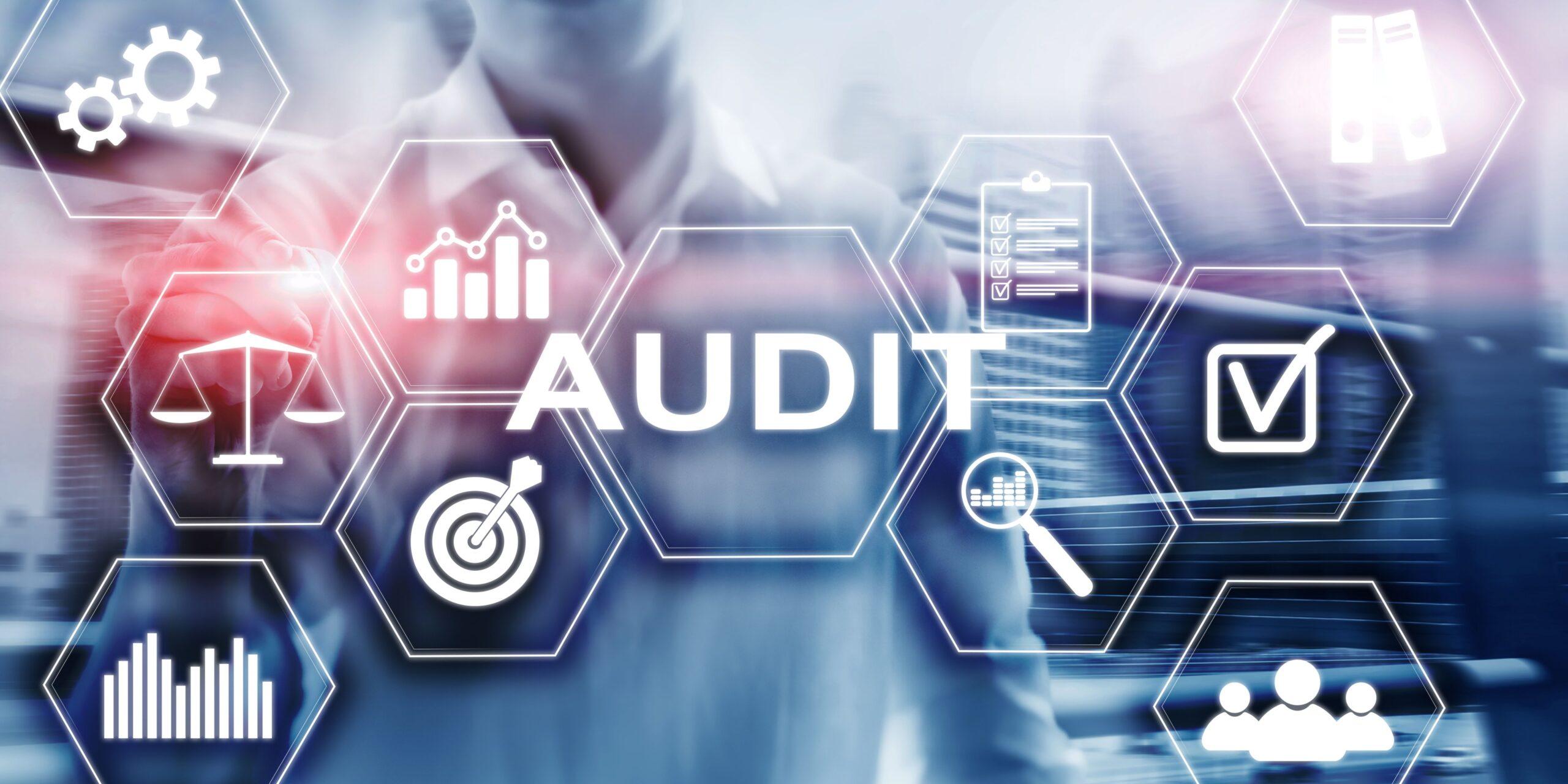 Auditoria - Ethical Strategists